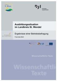 Ausbildungssituation im Landkreis St. Wendel - Perspektive ...