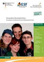 Newsletter Nr. 3 (Dez. 09) - Perspektive Berufsabschluss