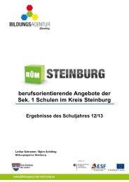 Berufsorientierende Angebote der Sek 1 Schuljahr 2012/2013
