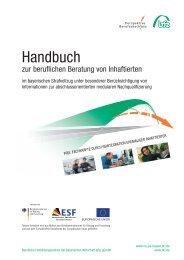 Handbuch zur beruflichen Beratung von Inhaftierten, Februar 2013 ...