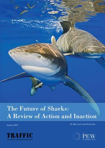 The Future of Sharks - The Pew Charitable Trusts