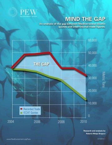 Mind the Gap (PDF) - The Pew Charitable Trusts