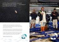 l'impatto che la pesca eccessiva ha su tutti noi3 - Ocean2012