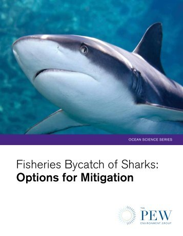 Fisheries Bycatch of Sharks: Options for Mitigation - The Pew ...