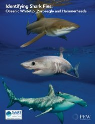 Shark Fin ID Guide - Pew Environment Group