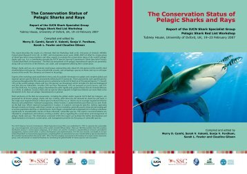 The Conservation Status of Pelagic Sharks and Rays - IUCN