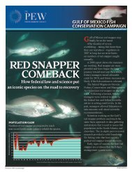 Red Snapper Comeback (PDF) - The Pew Charitable Trusts