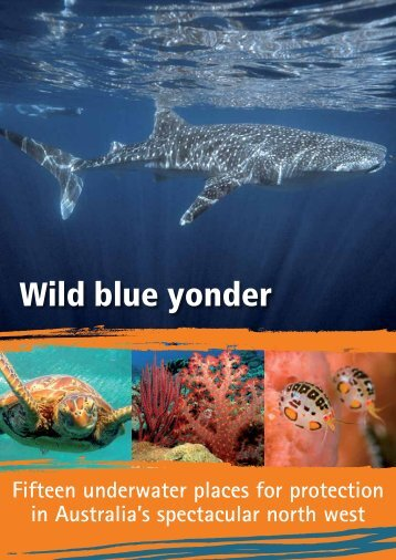 Wild Blue Yonder: Fifteen Underwater Places for Protection
