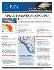 A Plan to Save Gag Grouper (PDF) - Pew Environment Group