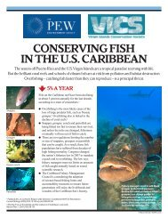 conserving fish in the us caribbean - The Pew Charitable Trusts