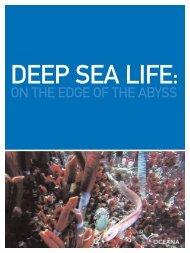 Deep Sea Life - The Pew Charitable Trusts