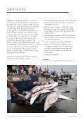 The Future of Sharks - The Pew Charitable Trusts - Page 7