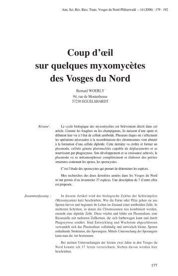 Coup d'œil sur quelques myxomycètes des Vosges du Nord