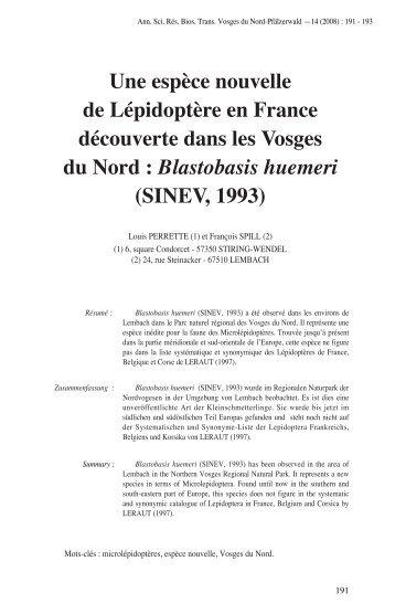 Blastobasis huemeri - Parc naturel régional des Vosges du Nord