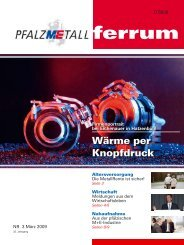 ferrum Ausgabe 3-2009 (573.14 kB) - PfalzMetall