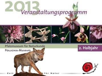 Download Veranstaltungskalender 2. Halbjahr 2013 - Pfalzmuseum ...