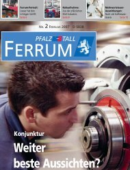 ferrum Ausgabe 2-2007 - PfalzMetall