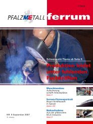 ferrum Ausgabe 9-2007 (615.66 kB) - PfalzMetall