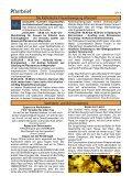 Ostern 2010 - Pfarrkirche Mayrhofen und Brandberg - Page 6