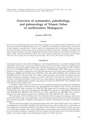 Overview of systematics, paleobiology, and paleoecology of Triassic ...