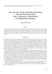 An overview of the freshwater fish fauna from the Kem Kem beds ...