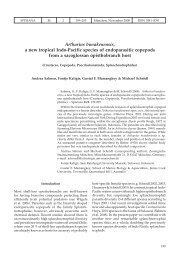 Arthurius bunakenensis, a new tropical Indo-Pacific species of ...