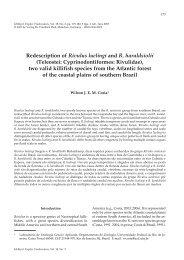 Redescription of Rivulus luelingi and R. haraldsiolii - Verlag Dr ...