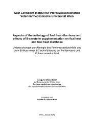 Summary of the thesis - Pferdewissenschaften