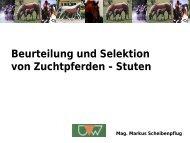Parameter zur Beurteilung von Pferden - Pferdewissenschaften