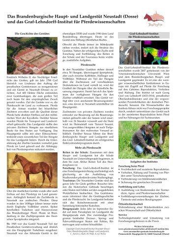 Infofolder für Besucher der Neustädter Gestüte - Pferdewissenschaften