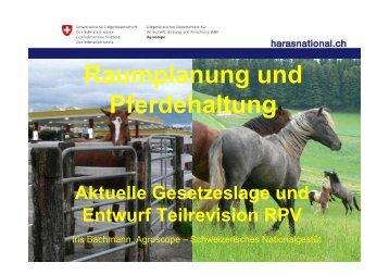 Vortrag Infoabend Bern - PferdeWoche
