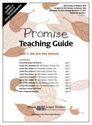 Promise TG Vol 21 #1-8 - Pflaum Home