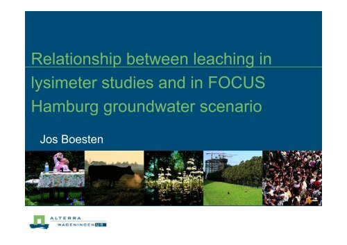 Relationship between leaching in lysimeter studies and ... - pfmodels