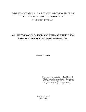 ANÁLISE ECONÔMICA DA PRODUÇÃO DE FEIJÃO, MILHO E ...