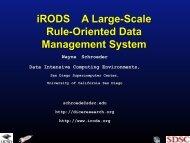 iRODS (application/pdf - 1.4 MB) - PGCon