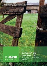 Ludipress® and Ludipress LCE - Pharma Ingredients & Services BASF
