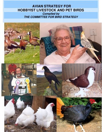avian strategy for hobbyist livestock and pet birds - The World ...