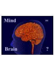 Mind Brain = ?