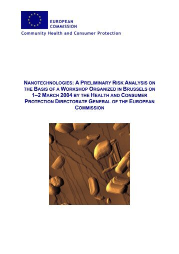 Nanotechnologies: A Preliminary Risk Analysis on the Basis of a ...