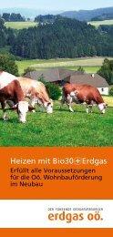 Heizen mit Bio30+Erdgas.pdf - Energie-Spar-Paket