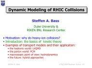 Steffen A. Bass CTEQ 2004 Summer School #1 - Duke Physics ...