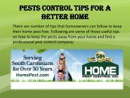 Pests control tips for a better home