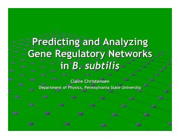 Predicting and Analyzing Gene Regulatory Networks in B. subtilis