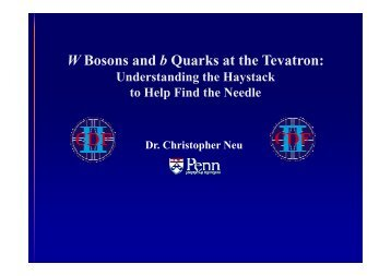 W Bosons and b Quarks at the Tevatron: Understanding the ...