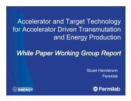 Accelerator and Target Technology for Accelerator Driven ...