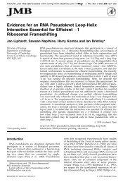 Evidence for an RNA Pseudoknot Loop-Helix Interaction ... - Physics