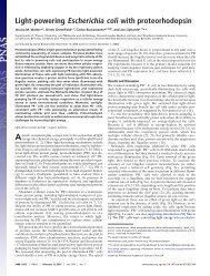 Light-powering Escherichia coli with proteorhodopsin - Physics ...