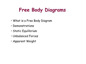 Vector forcesfree body diagrams i lecture06 free body diagramspdf ccuart Gallery