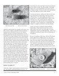 Contents Rushing for Gold Via the Southern Overland Route, Part 2 - Page 6