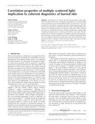 Correlation properties of multiple scattered light - Department of ...